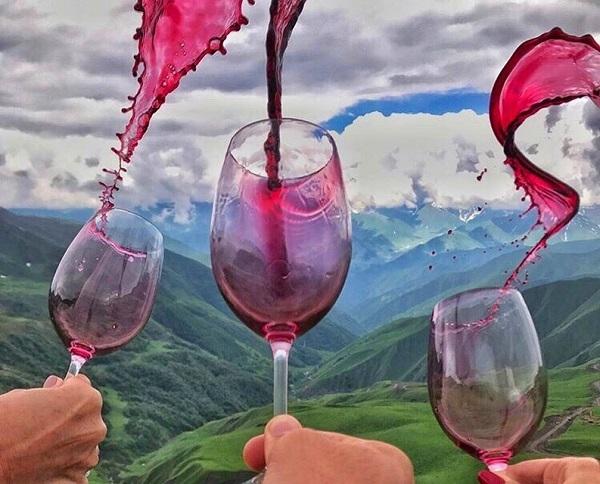 Виноград «саперави»: описание сорта, фото и отзывы. Основные его плюсы и минусы, характеристики и особенности выращивания в регионах